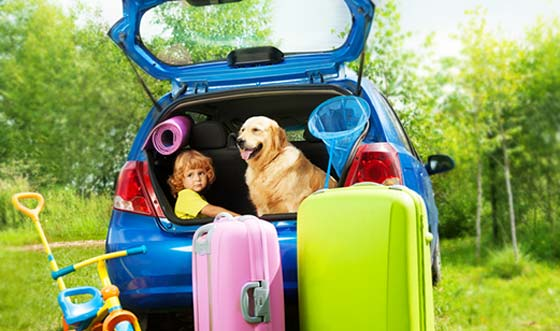 Is a hatchback the best small car for you