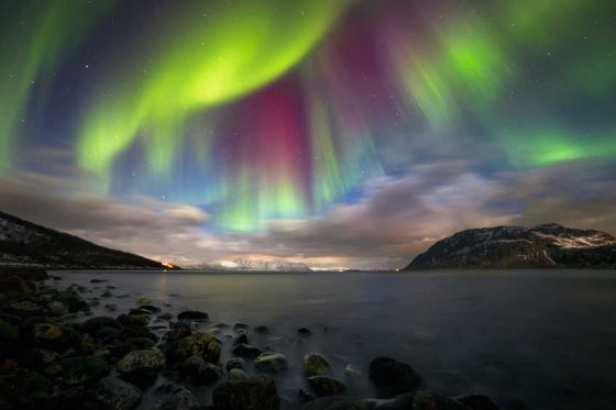Also known as polar auroras or the Northern Lights, these naturally-occurring lights intrigue everyone who sees them appear as glowing lines of vivid colour along the horizon or waves across the sky.