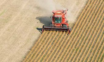 How has this year shaped up so far for agribusiness? CANSTAR surveys the industry predictions for the second half of the year.