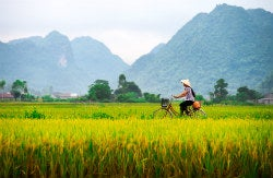 Travelling to Vietnam
