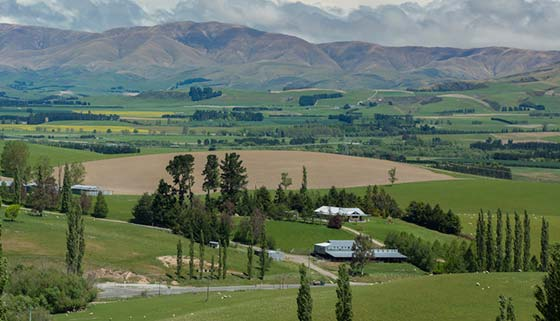 Prices down for lifestyle properties in new zealand