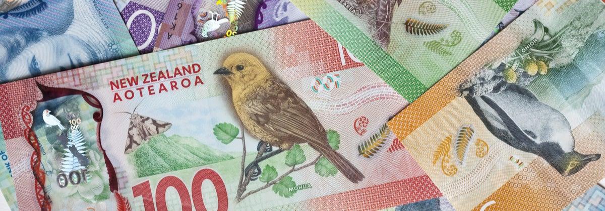 NZ dollar notes