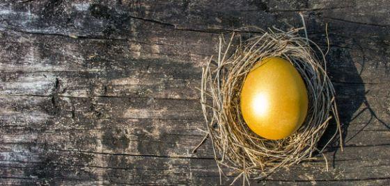 KiwiSaver golden egg