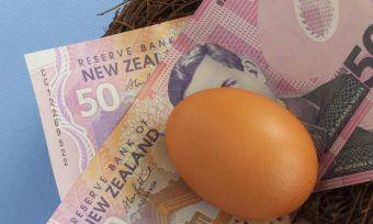 KiwiSaver nest egg